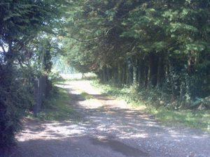Path to Frith Farm